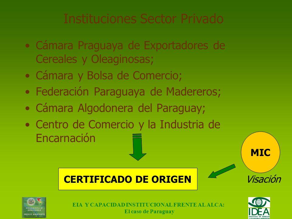 EIA Y CAPACIDAD INSTITUCIONAL FRENTE AL ALCA: El caso de Paraguay Contexto Comercial (cont.) Sector Privado MREMRE MICMIC