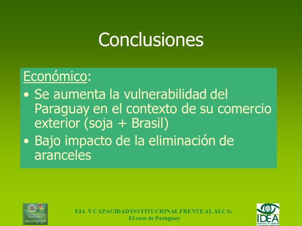 EIA Y CAPACIDAD INSTITUCIONAL FRENTE AL ALCA: El caso de Paraguay Conclusiones Generales