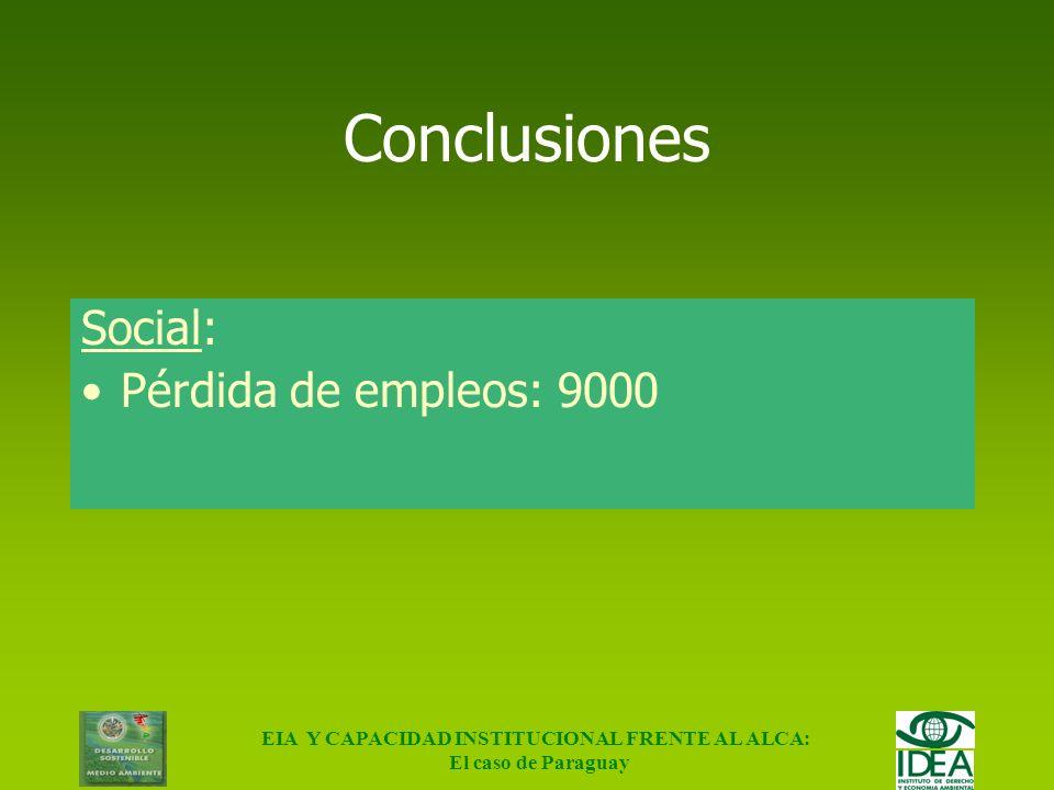 EIA Y CAPACIDAD INSTITUCIONAL FRENTE AL ALCA: El caso de Paraguay Conclusiones Económico: Se aumenta la vulnerabilidad del Paraguay en el contexto de