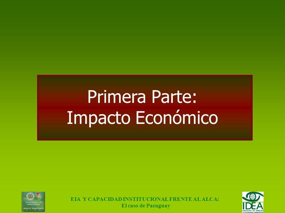 EIA Y CAPACIDAD INSTITUCIONAL FRENTE AL ALCA: El caso de Paraguay Cuán fuerte es el sistema institucional, para: –Morigerar impactos ambientales negat