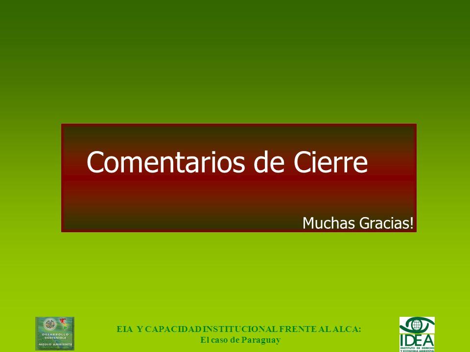 EIA Y CAPACIDAD INSTITUCIONAL FRENTE AL ALCA: El caso de Paraguay Conclusiones Social: Pérdida de empleos: 9000 Institucional: Falta de credibilidad y