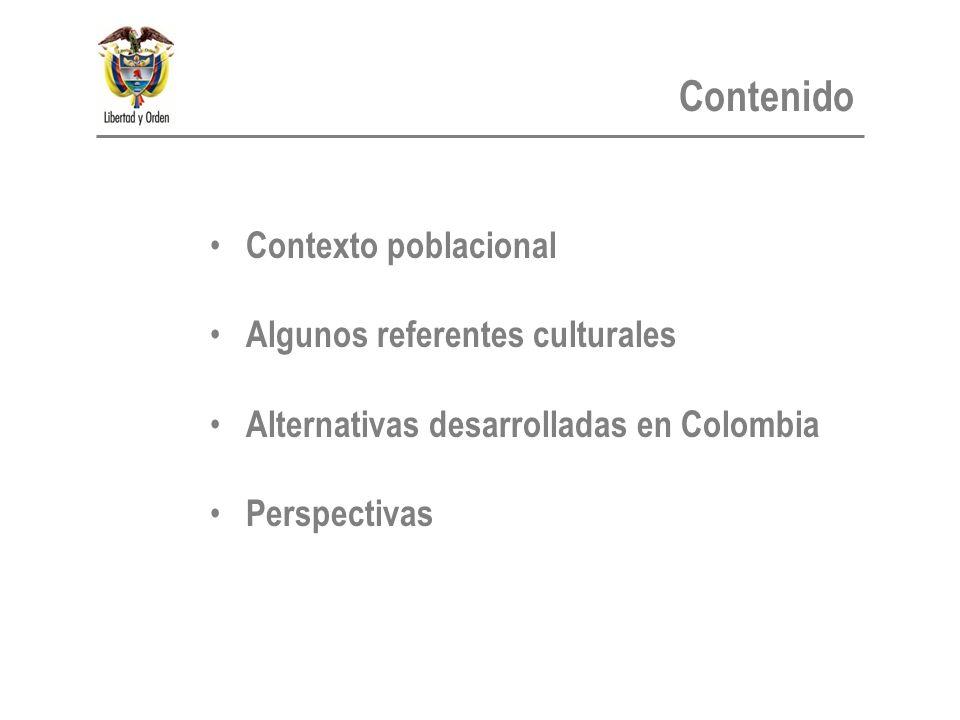 Contexto poblacional Algunos referentes culturales Alternativas desarrolladas en Colombia Perspectivas Contenido