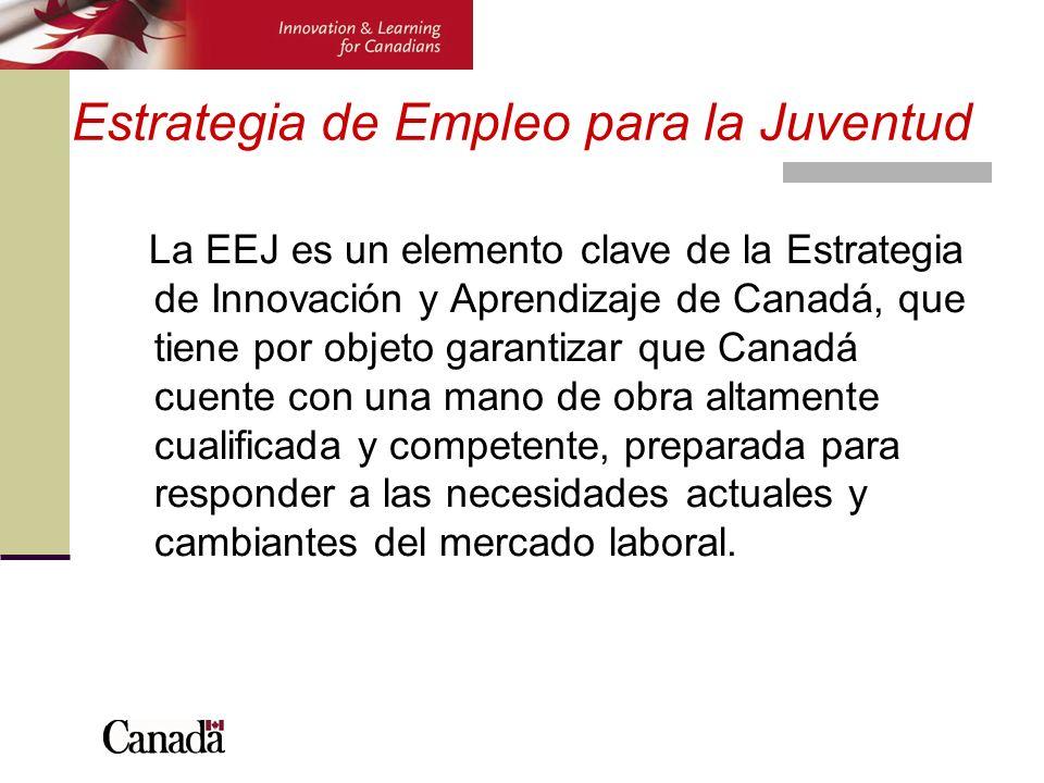 Características de la estrategia Enfoque centrado en el cliente Flexibilidad para responder a las necesidades individuales Adaptado al mercado de trabajo Rendición de cuentas mejorada Sujeto a revisión en 2008