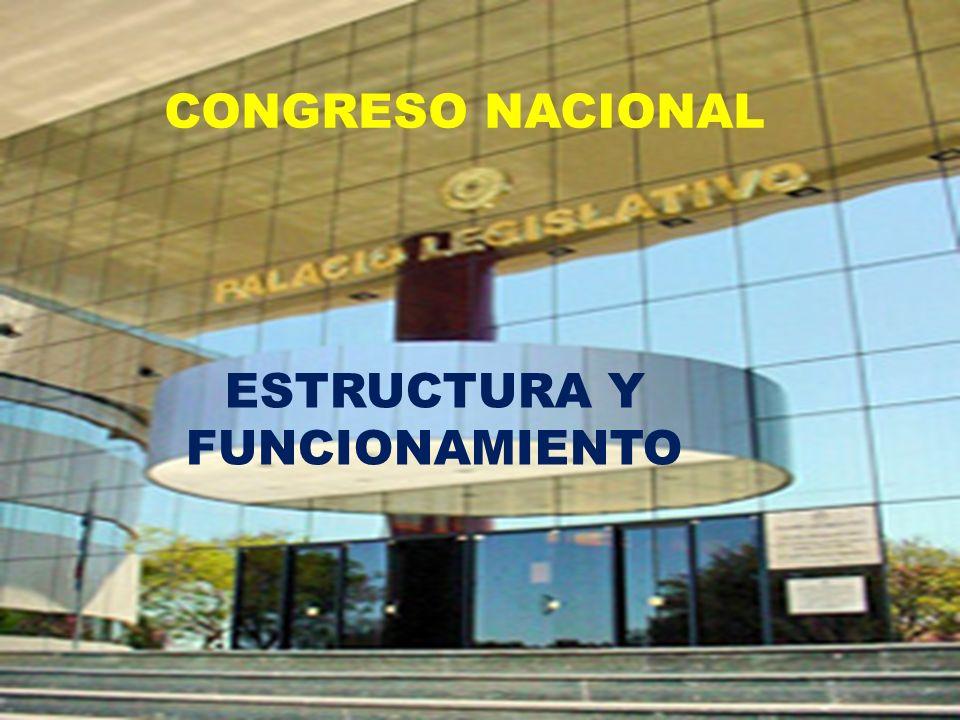 CONGRESO NACIONAL ESTRUCTURA Y FUNCIONAMIENTO