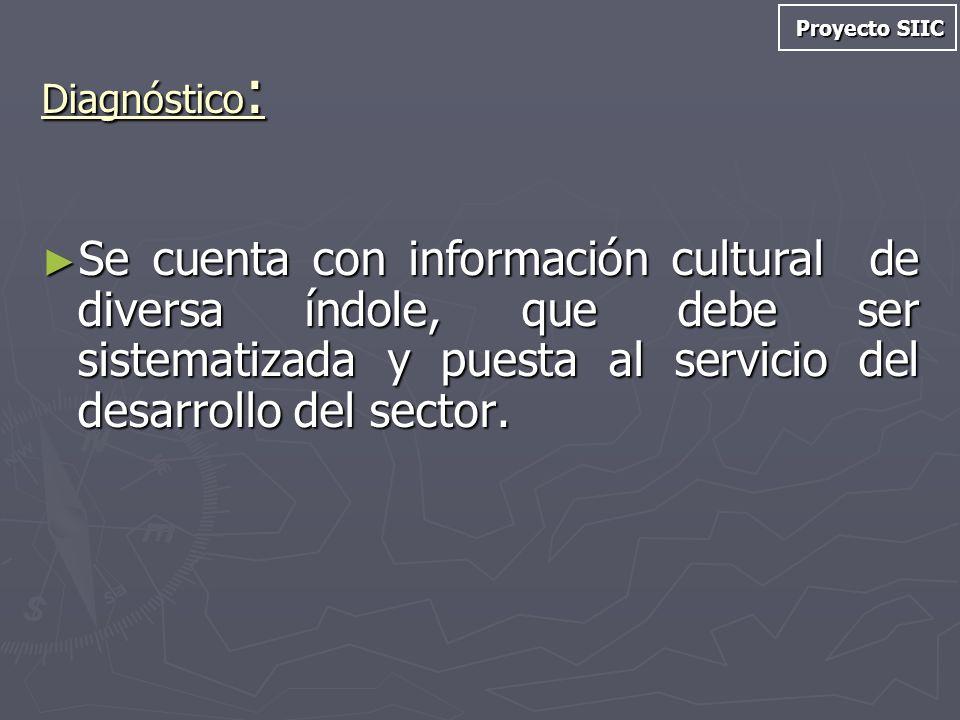 Diagnóstico : Se cuenta con información cultural de diversa índole, que debe ser sistematizada y puesta al servicio del desarrollo del sector. Se cuen