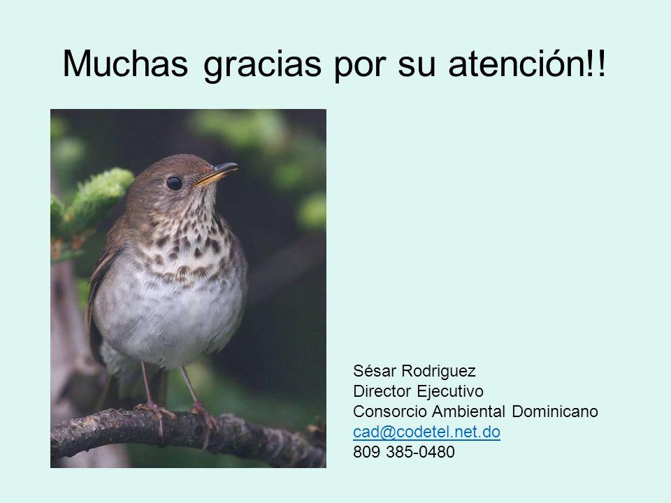 Muchas gracias por su atención!.