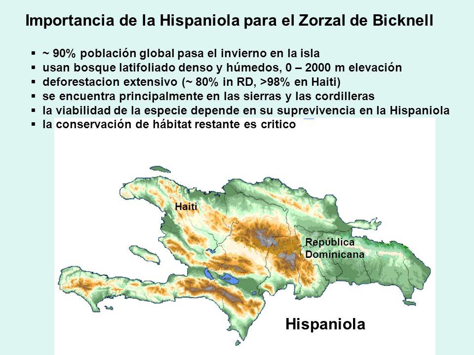 Hispaniola Repύblica Dominicana Haiti Importancia de la Hispaniola para el Zorzal de Bicknell ~ 90% población global pasa el invierno en la isla usan bosque latifoliado denso y húmedos, 0 – 2000 m elevación deforestacion extensivo (~ 80% in RD, >98% en Haiti) se encuentra principalmente en las sierras y las cordilleras la viabilidad de la especie depende en su suprevivencia en la Hispaniola la conservación de hábitat restante es critico