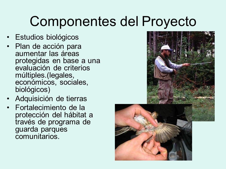 Componentes del Proyecto Estudios biológicos Plan de acción para aumentar las áreas protegidas en base a una evaluación de criterios múltiples.(legales, económicos, sociales, biológicos) Adquisición de tierras Fortalecimiento de la protección del hábitat a través de programa de guarda parques comunitarios.