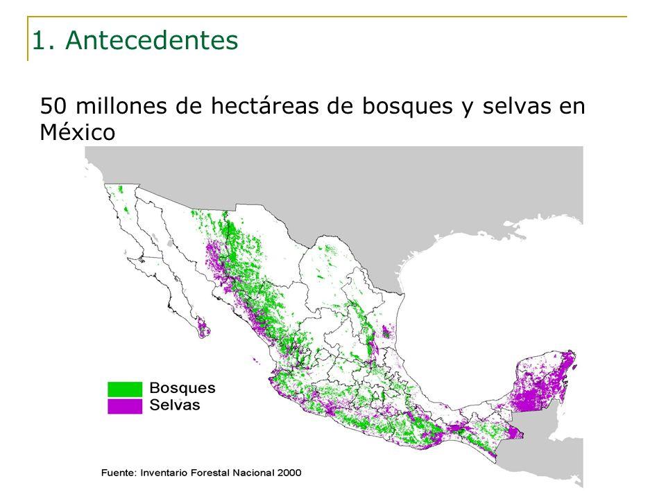 50 millones de hectáreas de bosques y selvas en México 1. Antecedentes