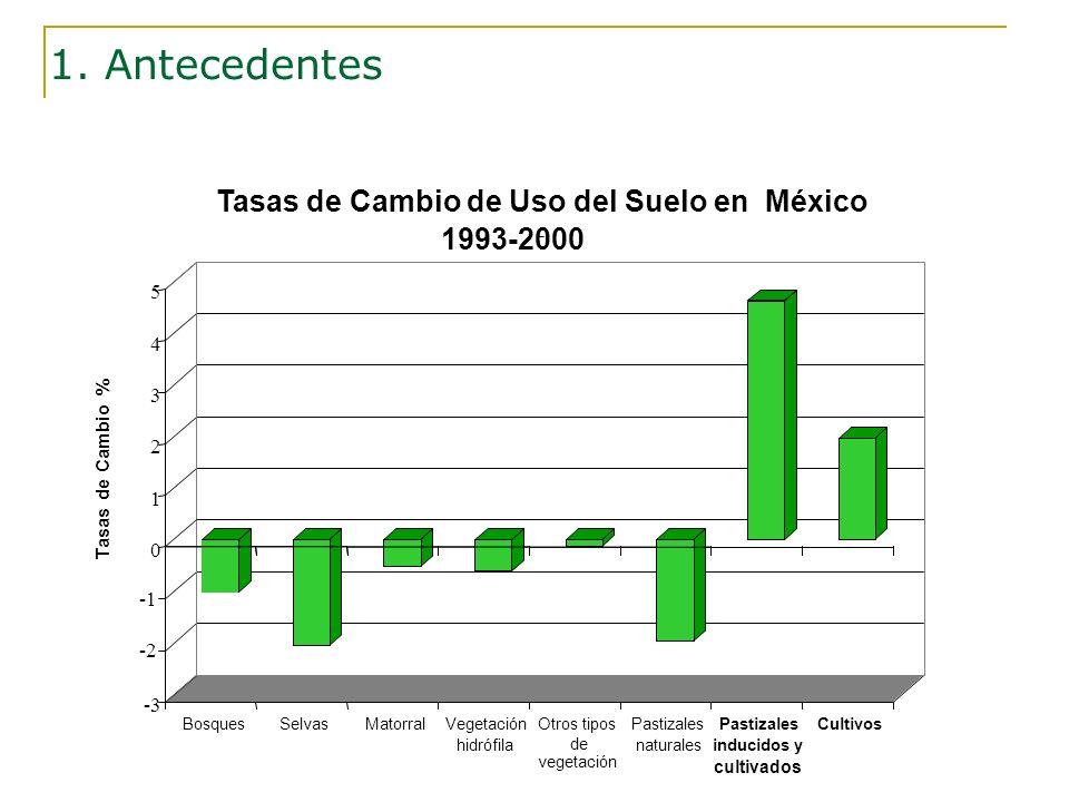 Fuente: Velázquez A. et al., 2002 -2 1. Antecedentes