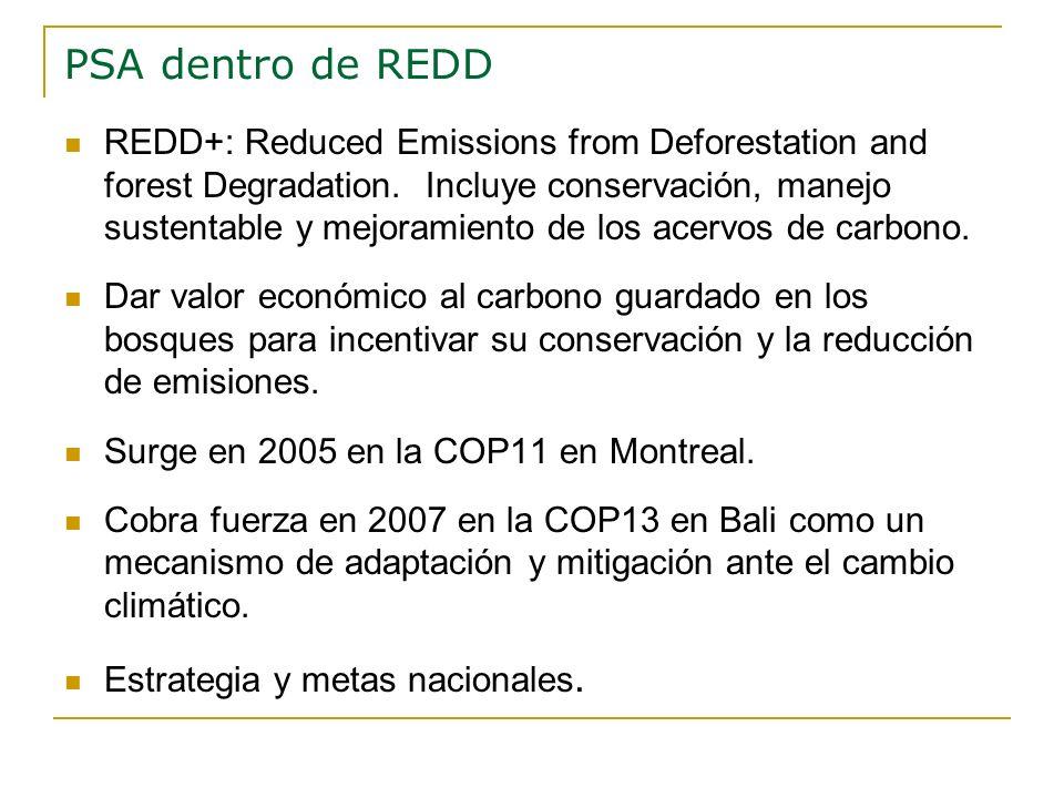 PSA dentro de REDD REDD+: Reduced Emissions from Deforestation and forest Degradation. Incluye conservación, manejo sustentable y mejoramiento de los