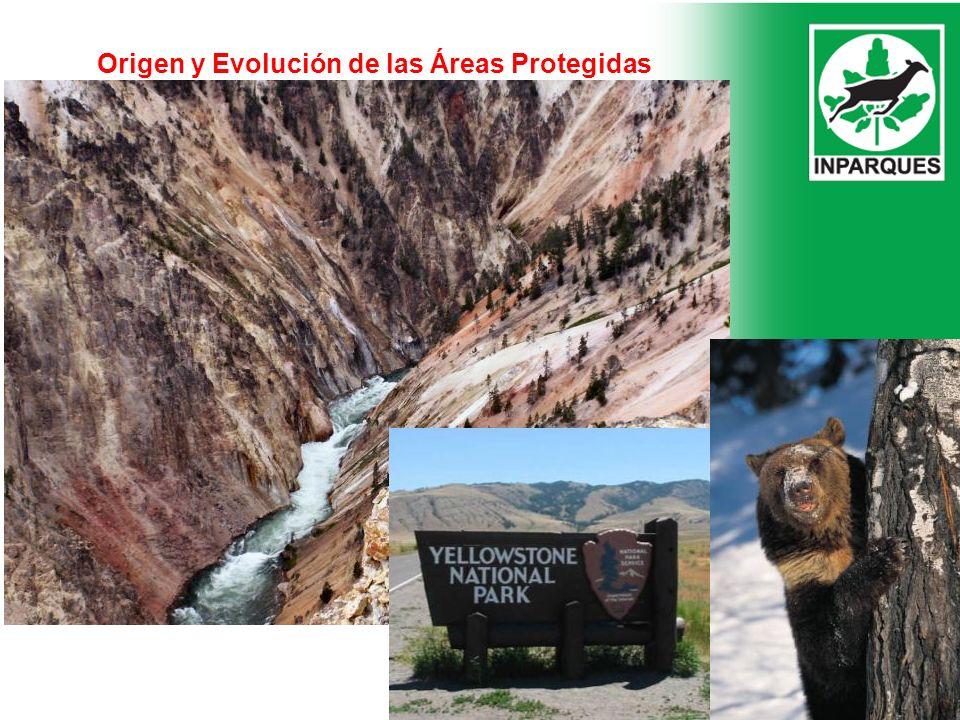 Origen y Evolución de las Áreas Protegidas