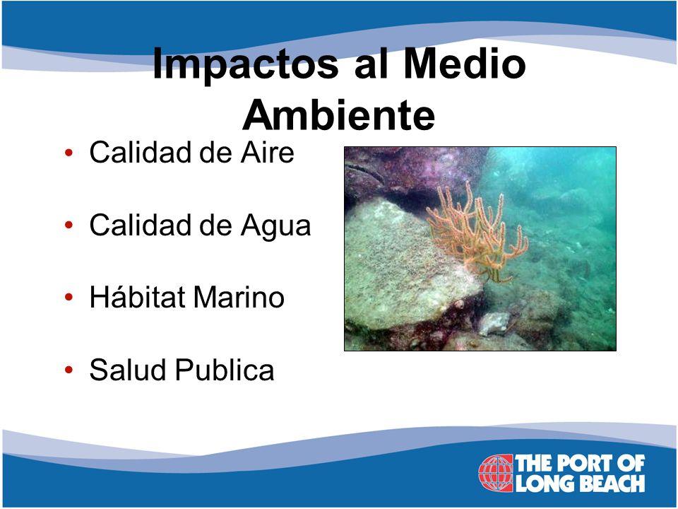 Impactos al Medio Ambiente Calidad de Aire Calidad de Agua Hábitat Marino Salud Publica