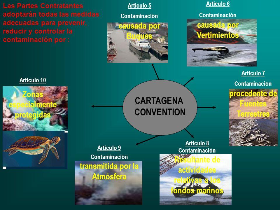 CARTAGENA CONVENTION Articulo 6 Contaminación causada por Vertimientos Articulo 7 Contaminación procedente de Fuentes Terrestres Articulo 5 Contaminac