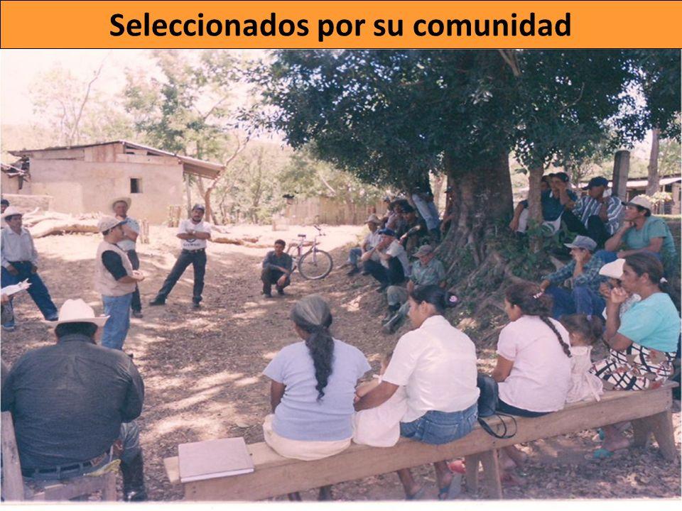 Ambito de acción: su comunidad