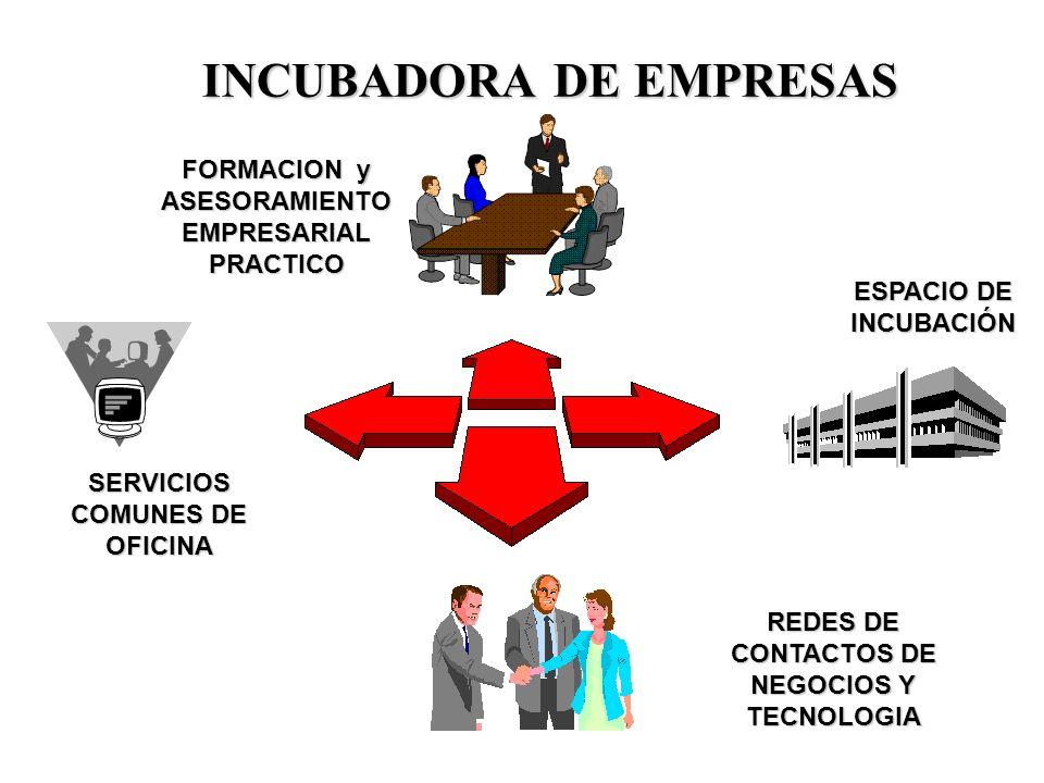 Componentes del PROGRAMA CREACION DE EMPRESAS Diplomado.