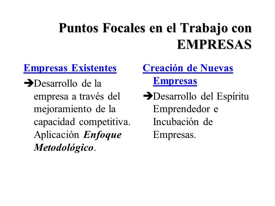 Puntos Focales en el Trabajo con EMPRESAS Empresas Existentes èDesarrollo de la empresa a través del mejoramiento de la capacidad competitiva.