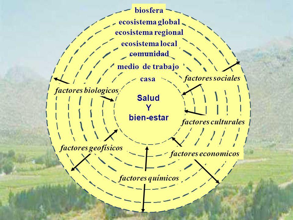 biosfera ecosistema global ecosistema regional ecosistema local comunidad medio de trabajo factores geofísicos factores biologicos factores economicos factores sociales casa factores culturales factores químicos Salud Y bien-estar