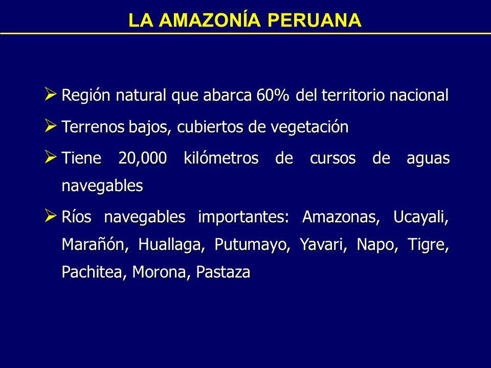 Región natural que abarca 60% del territorio nacional Región natural que abarca 60% del territorio nacional Terrenos bajos, cubiertos de vegetación Terrenos bajos, cubiertos de vegetación Tiene 20,000 kilómetros de cursos de aguas navegables Tiene 20,000 kilómetros de cursos de aguas navegables Ríos navegables importantes: Amazonas, Ucayali, Marañón, Huallaga, Putumayo, Yavari, Napo, Tigre, Pachitea, Morona, Pastaza Ríos navegables importantes: Amazonas, Ucayali, Marañón, Huallaga, Putumayo, Yavari, Napo, Tigre, Pachitea, Morona, Pastaza LA AMAZONÍA PERUANA