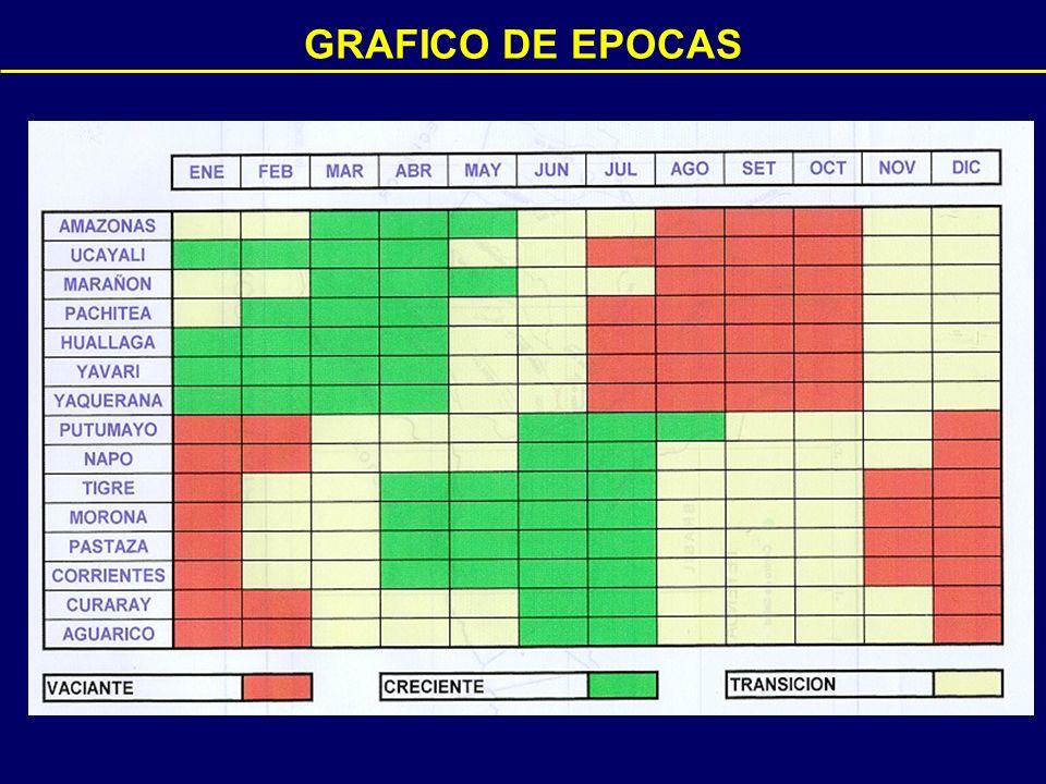 GRAFICO DE EPOCAS