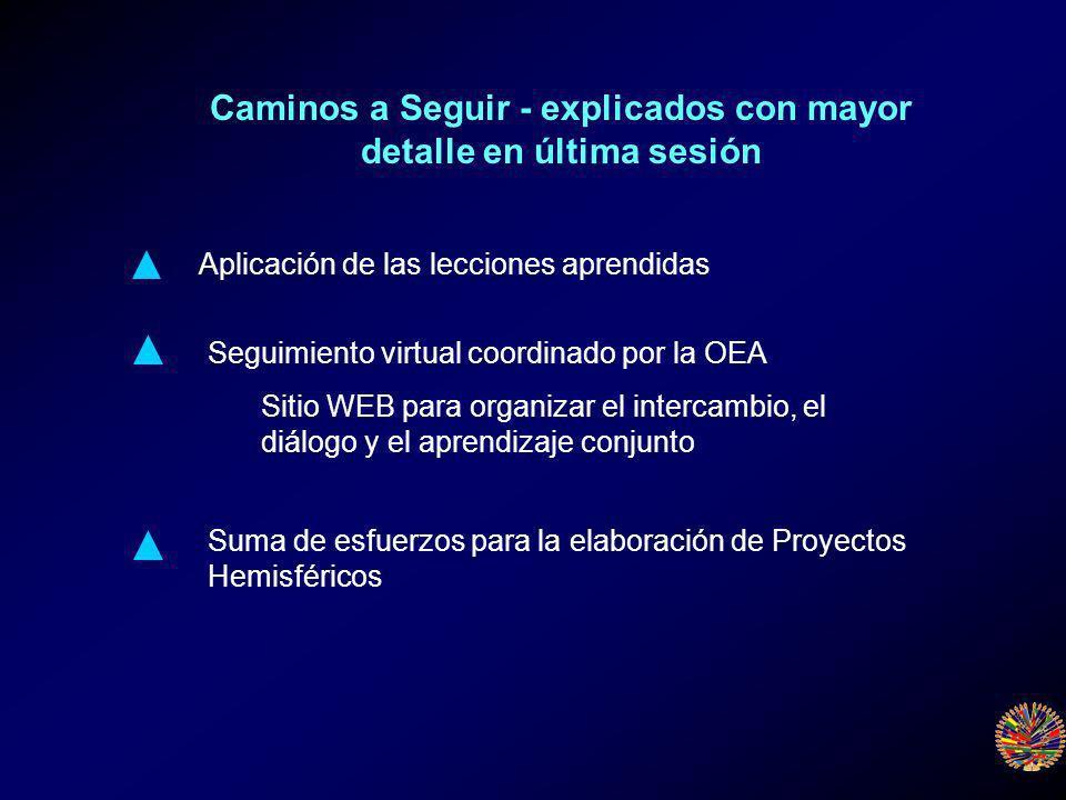Caminos a Seguir - explicados con mayor detalle en última sesión Aplicación de las lecciones aprendidas Seguimiento virtual coordinado por la OEA Sitio WEB para organizar el intercambio, el diálogo y el aprendizaje conjunto Suma de esfuerzos para la elaboración de Proyectos Hemisféricos