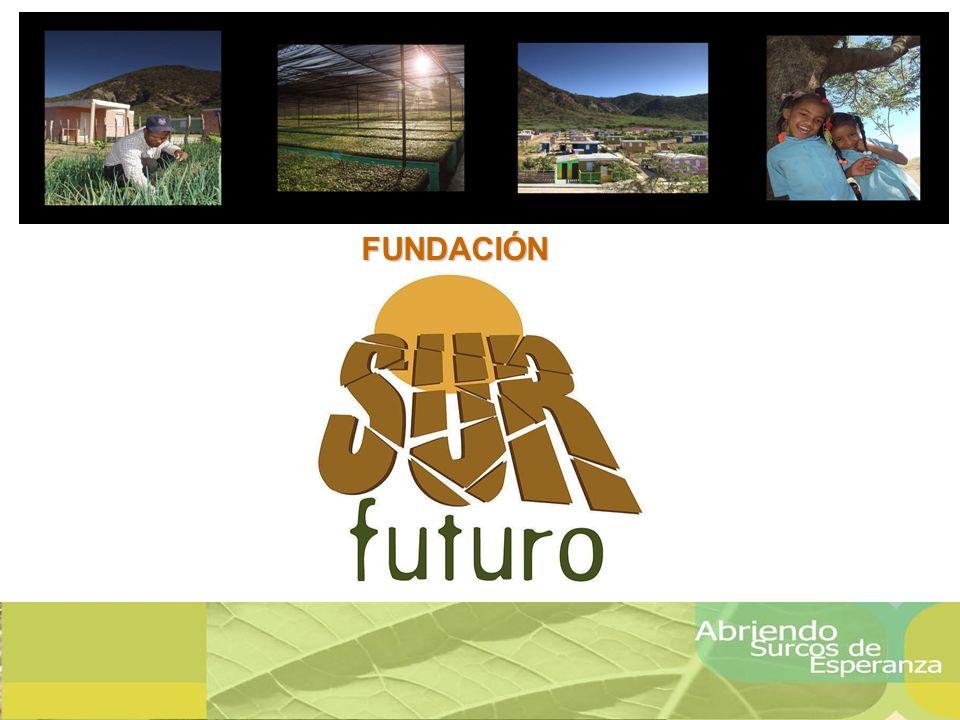 Ministerio de Medio Ambiente y Recursos Naturales Fundación Sur Futuro, Inc.
