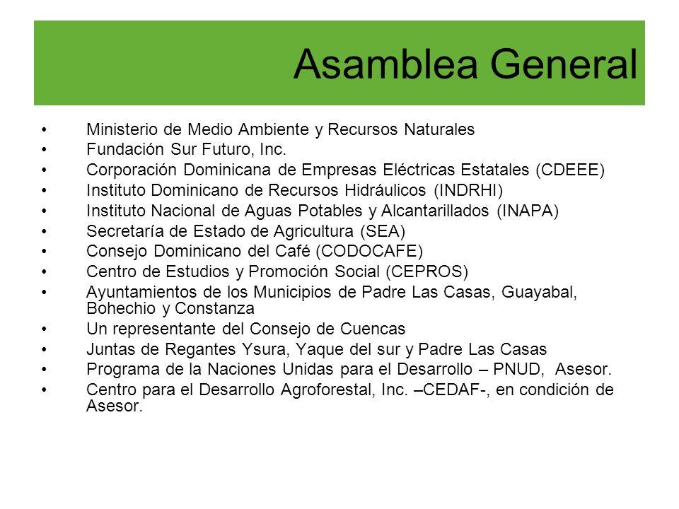 Ministerio de Medio Ambiente y Recursos Naturales Fundación Sur Futuro, Inc. Corporación Dominicana de Empresas Eléctricas Estatales (CDEEE) Instituto