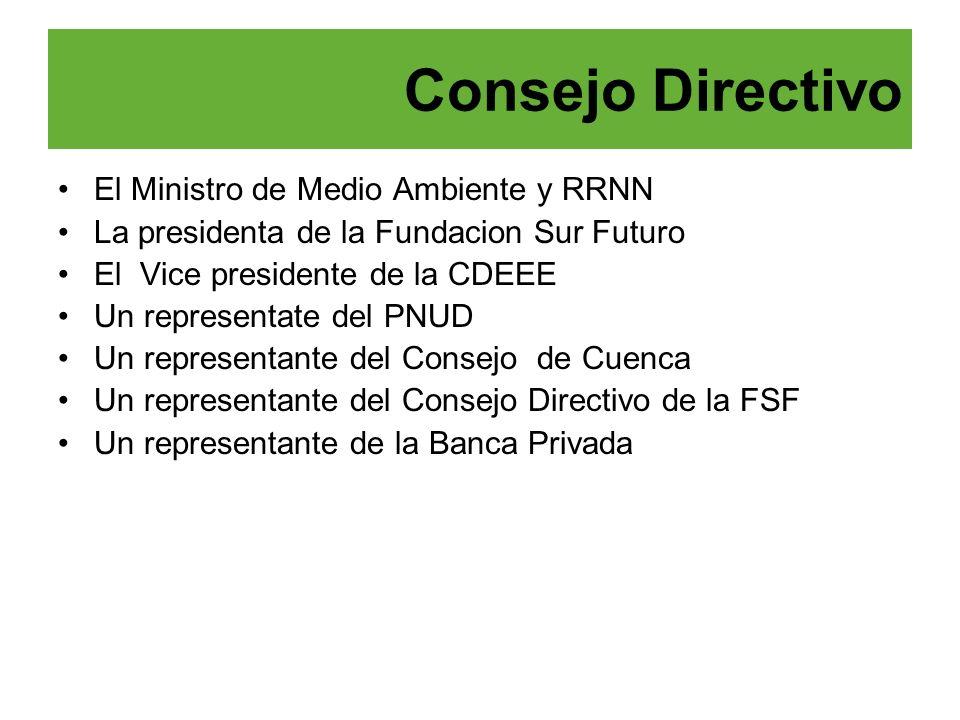 El Ministro de Medio Ambiente y RRNN La presidenta de la Fundacion Sur Futuro El Vice presidente de la CDEEE Un representate del PNUD Un representante