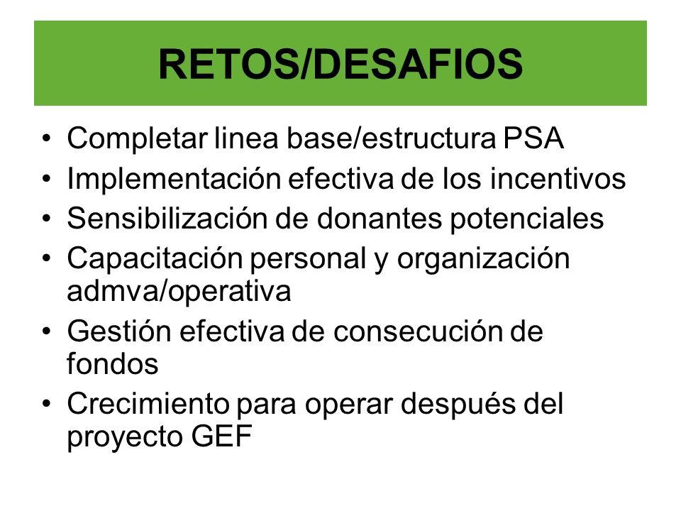 Completar linea base/estructura PSA Implementación efectiva de los incentivos Sensibilización de donantes potenciales Capacitación personal y organiza