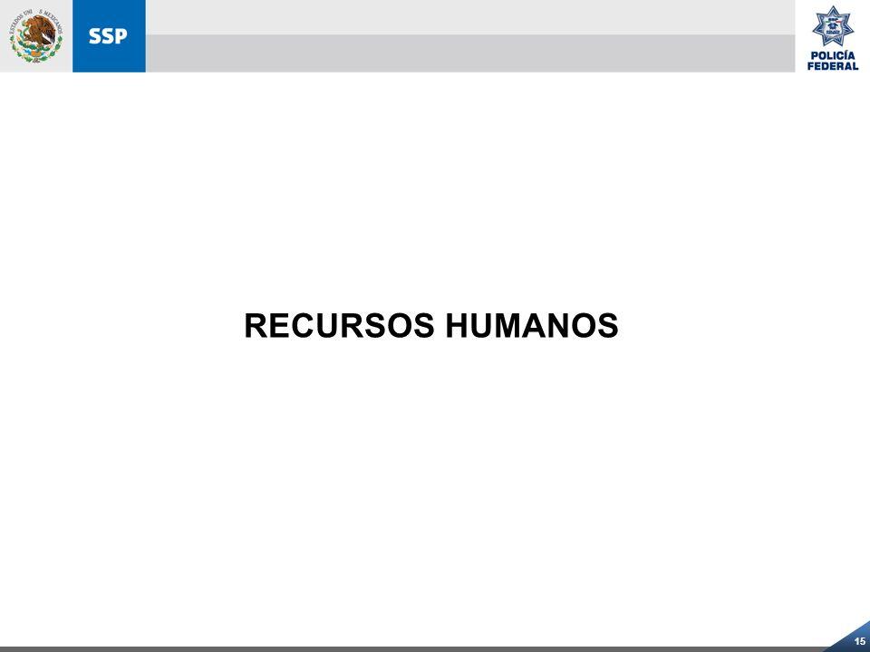 15 RECURSOS HUMANOS