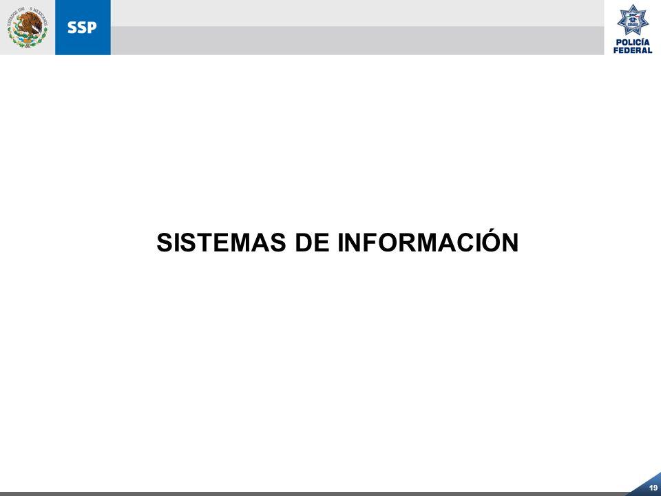 19 SISTEMAS DE INFORMACIÓN