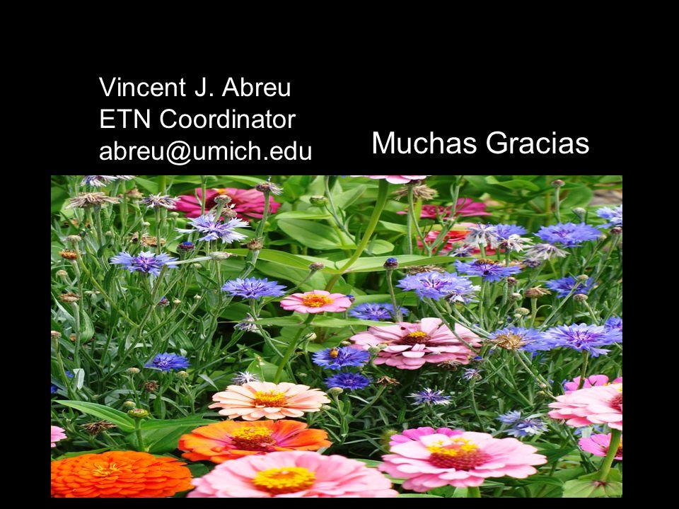 Vincent J. Abreu ETN Coordinator abreu@umich.edu Muchas Gracias