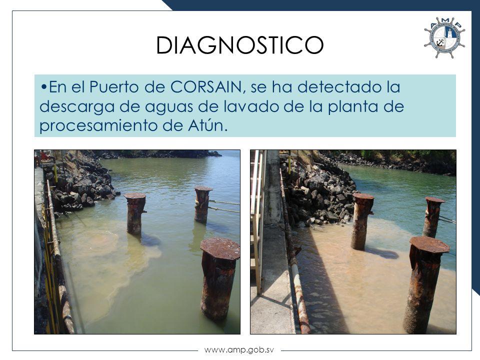 www.amp.gob.sv DIAGNOSTICO En el Puerto de CORSAIN, se ha detectado la descarga de aguas de lavado de la planta de procesamiento de Atún.