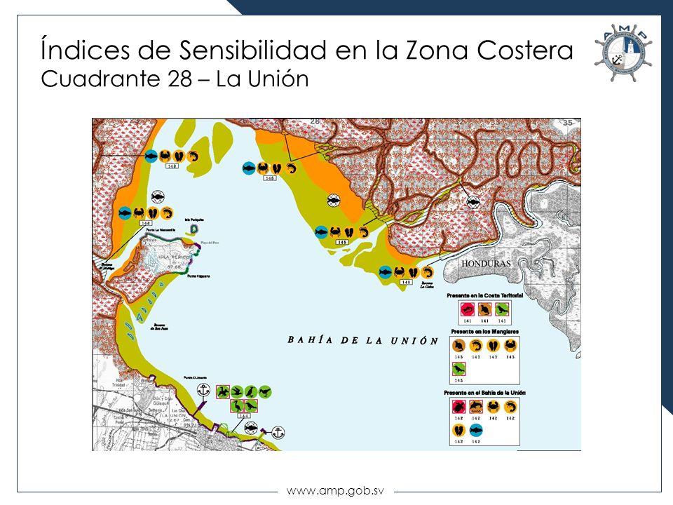 www.amp.gob.sv Índices de Sensibilidad en la Zona Costera Cuadrante 28 – La Unión