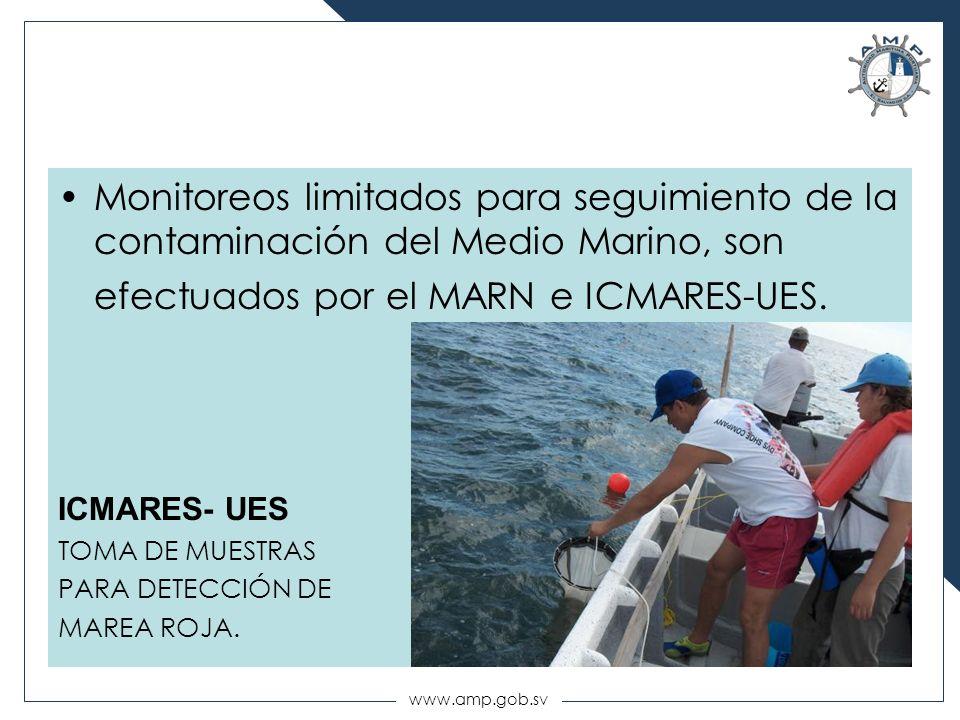 www.amp.gob.sv Monitoreos limitados para seguimiento de la contaminación del Medio Marino, son efectuados por el MARN e ICMARES-UES. ICMARES- UES TOMA