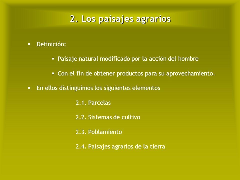 2.2. Los paisajes agrarios: sistemas de cultivo Secano