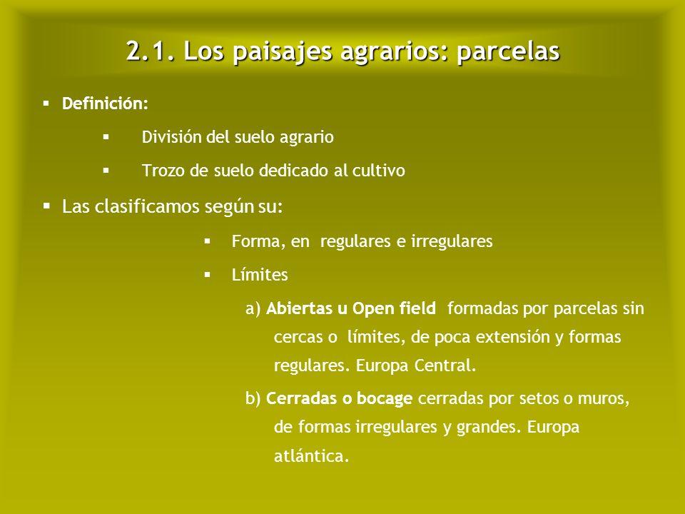 2.1. Los paisajes agrarios: parcelas Open field
