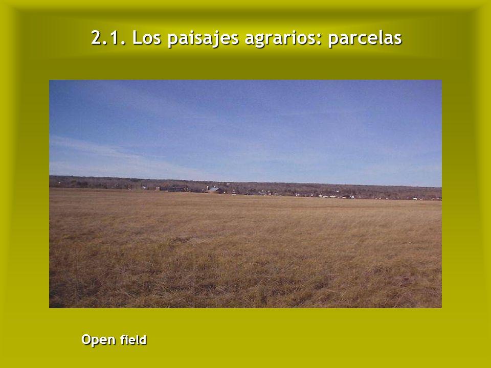 2.1. Los paisajes agrarios: parcelas Bocage