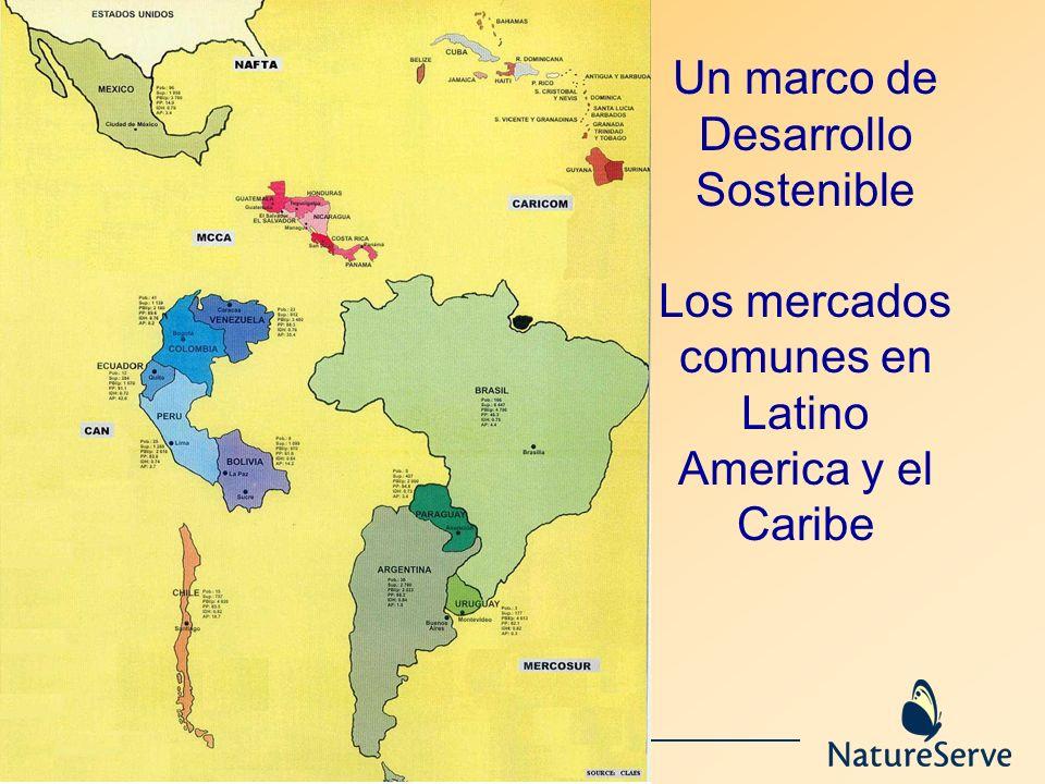 Un marco de Desarrollo Sostenible Los mercados comunes en Latino America y el Caribe