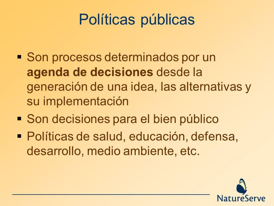 Políticas públicas Son procesos determinados por un agenda de decisiones desde la generación de una idea, las alternativas y su implementación Son dec