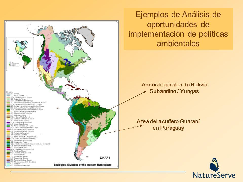 Ejemplos de Análisis de oportunidades de implementación de políticas ambientales Area del acuífero Guaraní en Paraguay Andes tropicales de Bolivia Sub