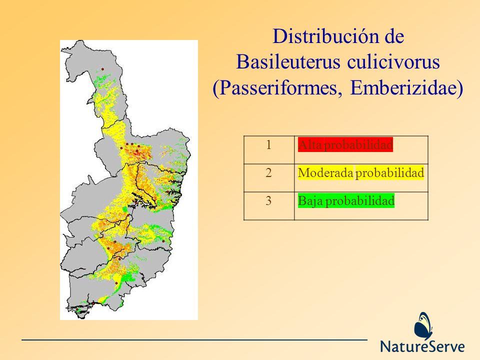 Distribución de Basileuterus culicivorus (Passeriformes, Emberizidae) 1Alta probabilidad 2Moderada probabilidad 3Baja probabilidad