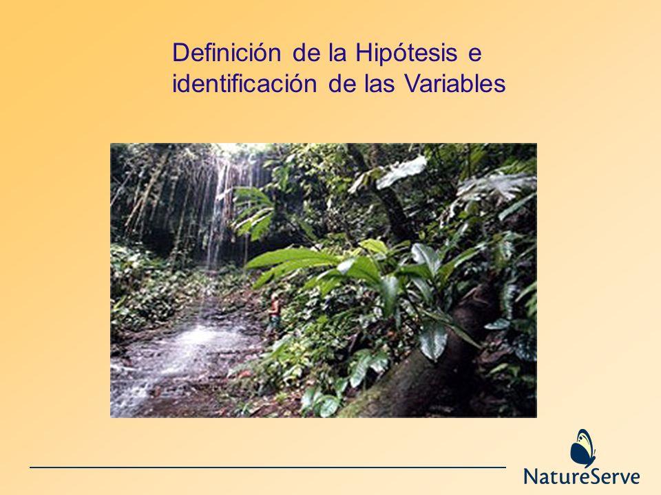 Definición de la Hipótesis e identificación de las Variables