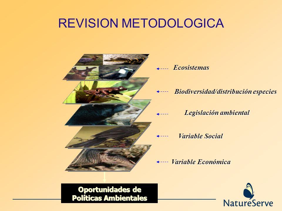 REVISION METODOLOGICA Variable Económica Legislación ambiental Variable Social Ecosistemas Biodiversidad/distribución especies Oportunidades de Políti