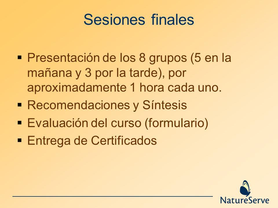 Sesiones finales Presentación de los 8 grupos (5 en la mañana y 3 por la tarde), por aproximadamente 1 hora cada uno. Recomendaciones y Síntesis Evalu