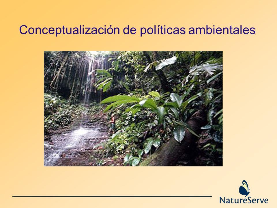 Conceptualización de políticas ambientales