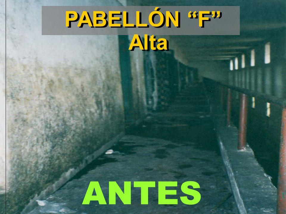 ANTES PABELLÓN F Alta