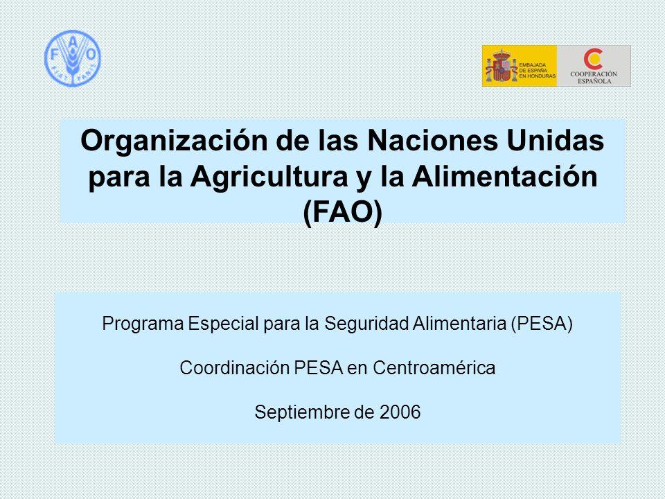 Organización de las Naciones Unidas para la Agricultura y la Alimentación (FAO) Programa Especial para la Seguridad Alimentaria (PESA) Coordinación PE