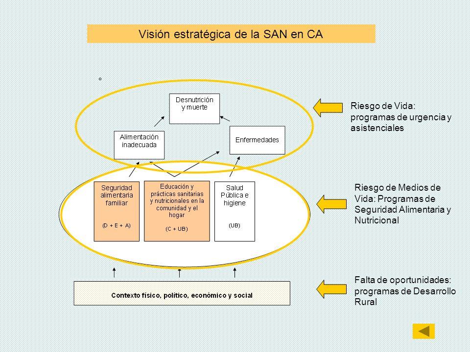 Visión estratégica de la SAN en CA Riesgo de Vida: programas de urgencia y asistenciales Riesgo de Medios de Vida: Programas de Seguridad Alimentaria