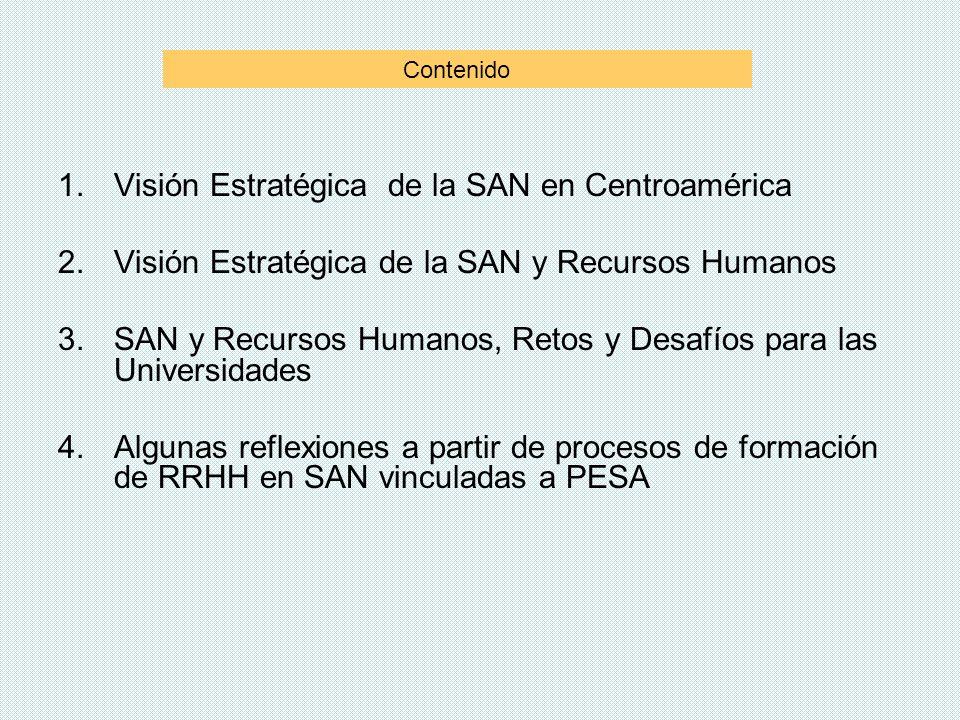 1.Visión Estratégica de la SAN en Centroamérica 2.Visión Estratégica de la SAN y Recursos Humanos 3.SAN y Recursos Humanos, Retos y Desafíos para las